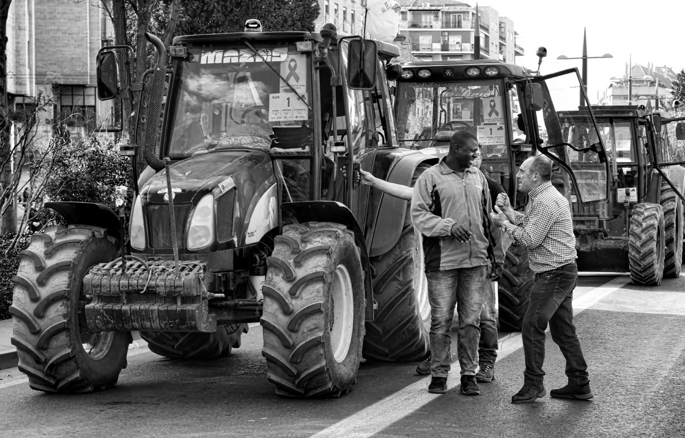 Manifestación del olivar tractores 03