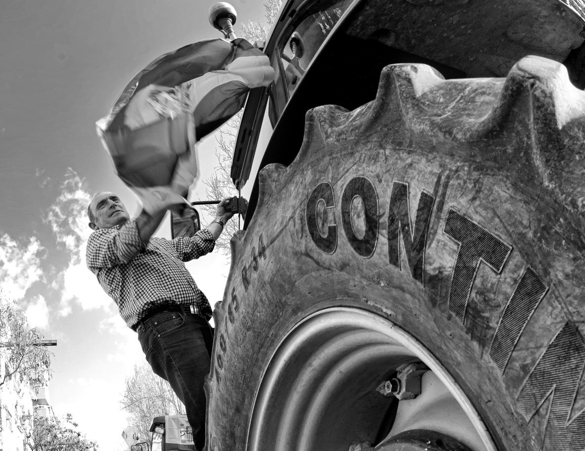 Manifestación del olivar tractores 08