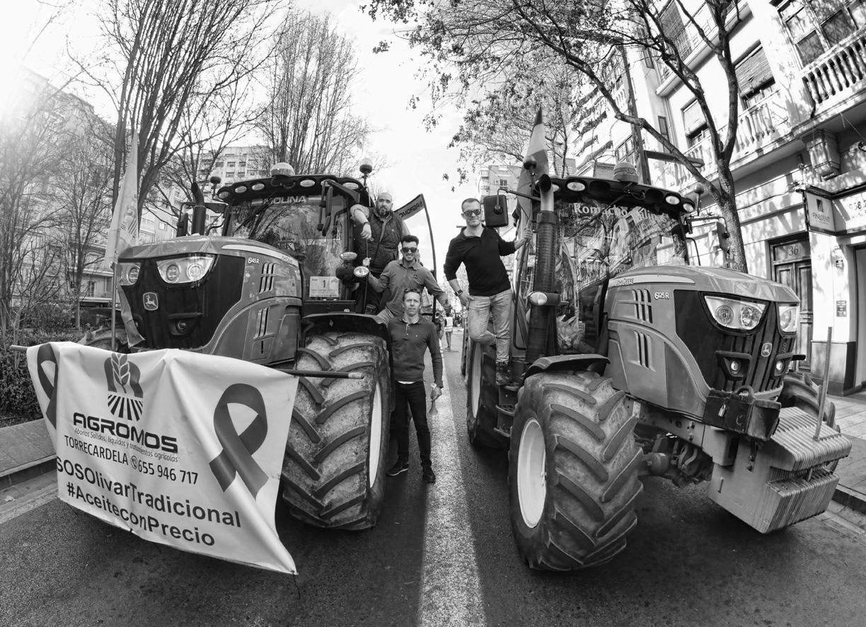 Manifestación del olivar tractores 11