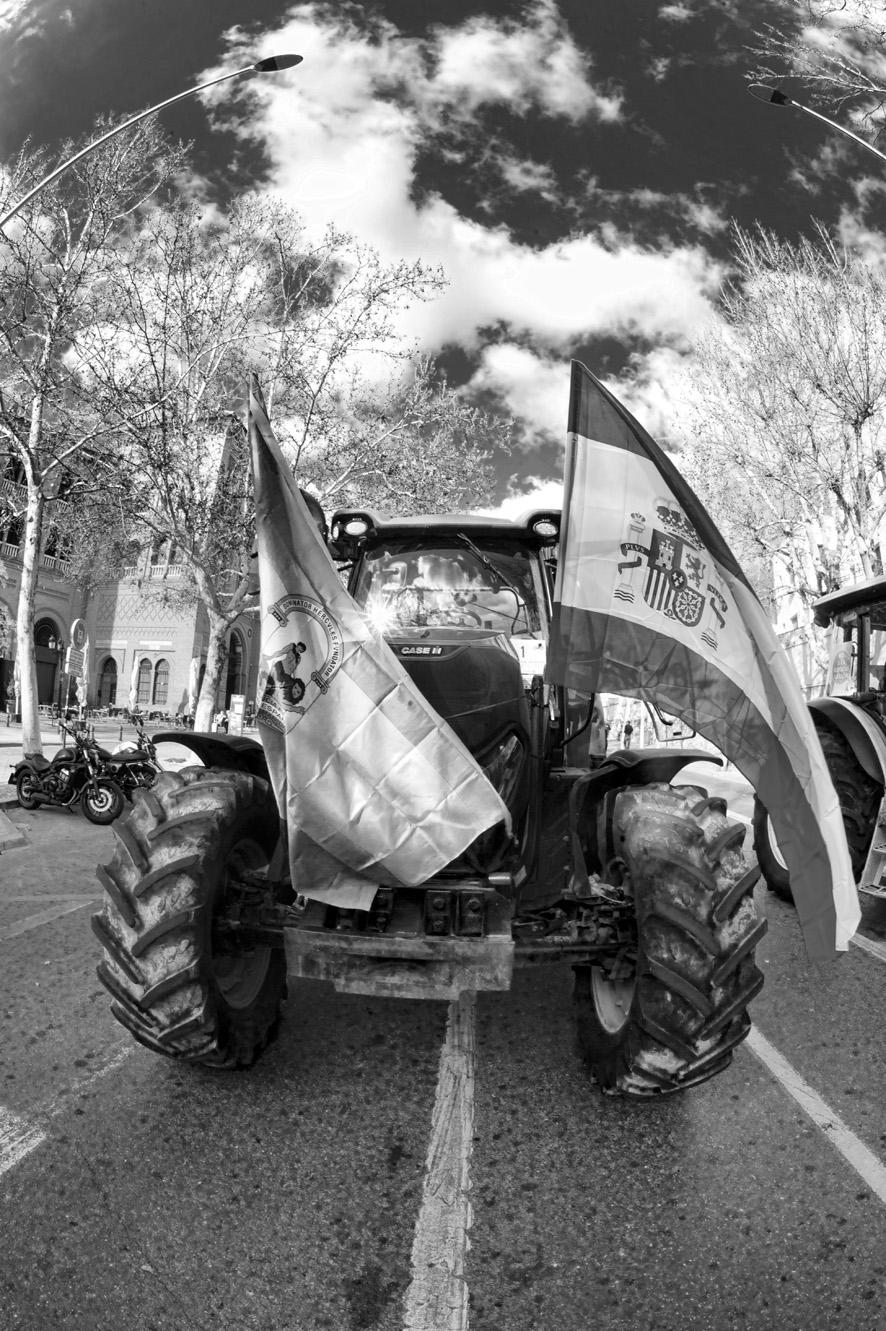 Manifestación del olivar tractores 16