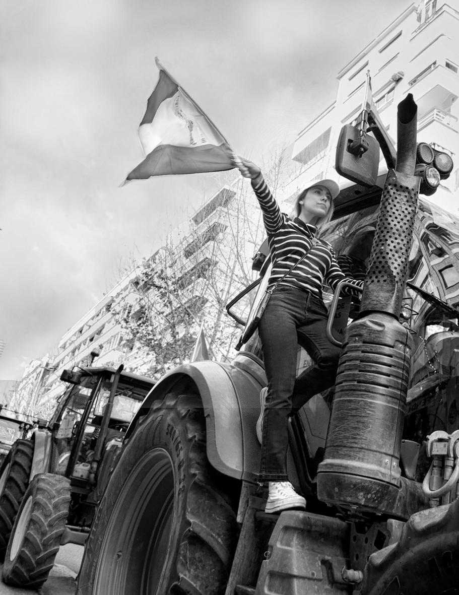 Manifestación del olivar tractores 19